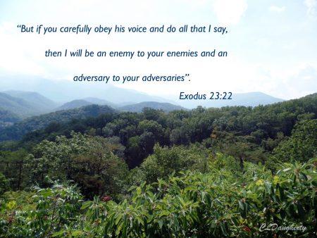 exodus 23-22