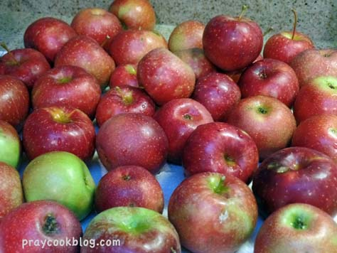 Red Rome Apples