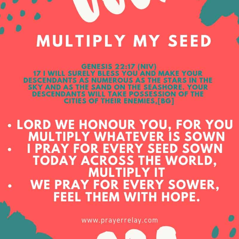prayer for my seed