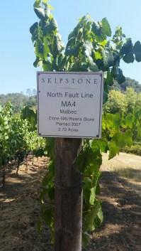 Skipstone