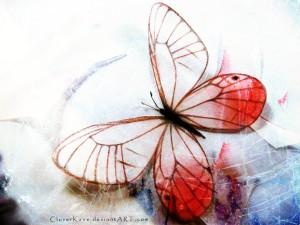 pink_glasswing_butterfly_by_cloverkane-d52sav3