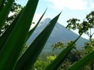MOUNT COSTA RICA