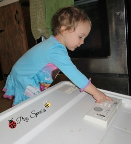 Ladybug adds dishwasher to chores list