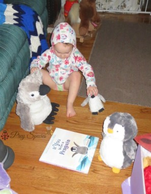 ladybug reads the penquins a book about penquins