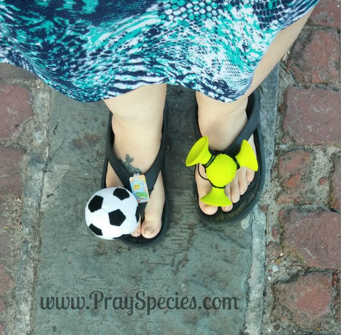edel shoes with logo