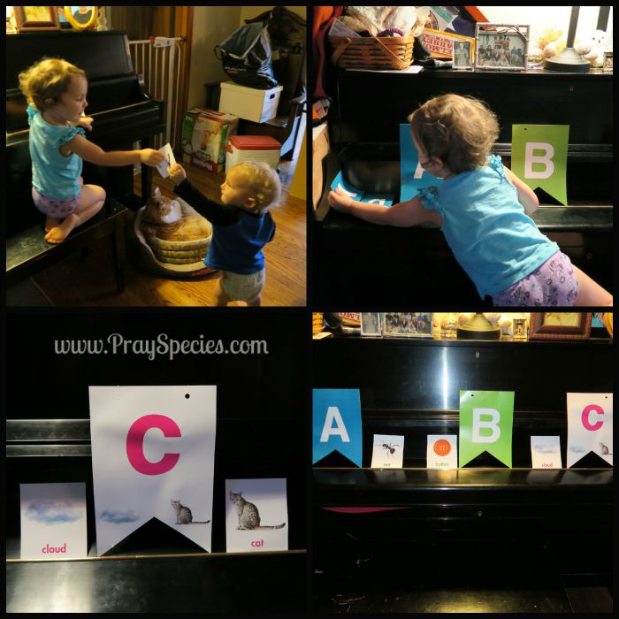 ABC activity Collage