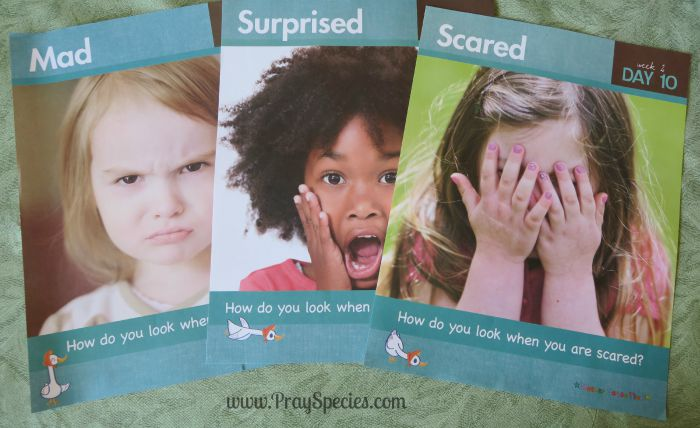 emotion topic pages