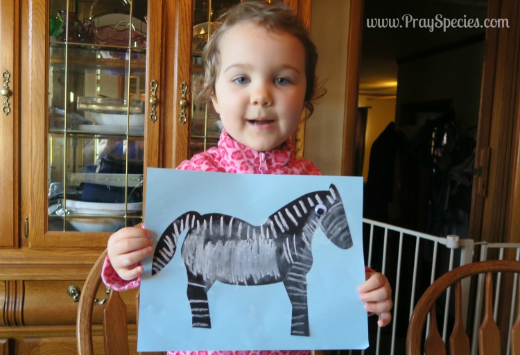 zebra with chalk with watermark