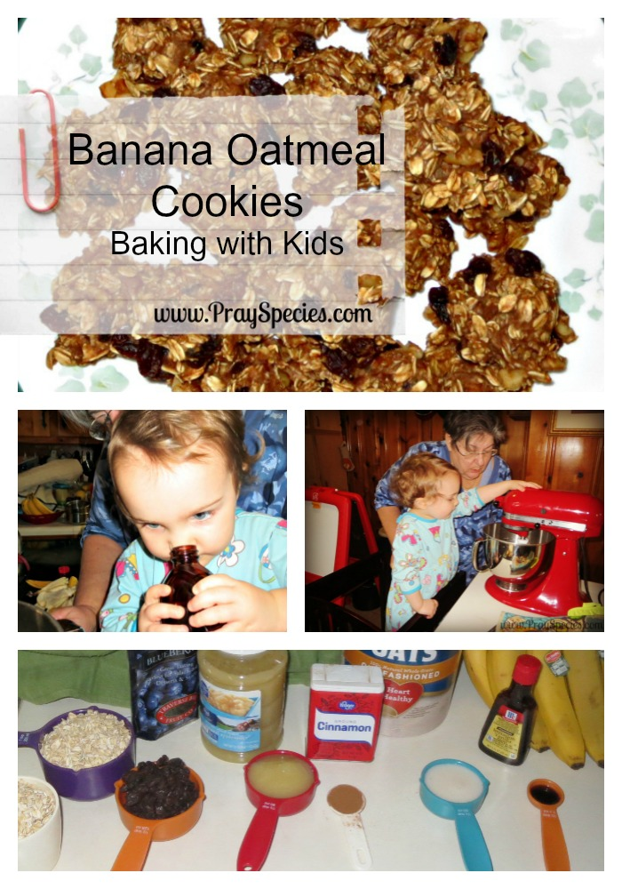 Banana Oatmeal Cookies Baking With Kids Collage