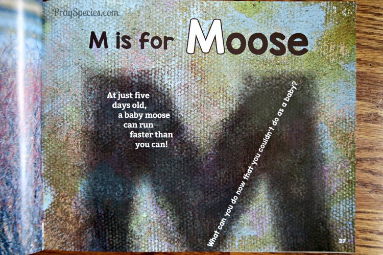 M is for Moose page in a-zoo book