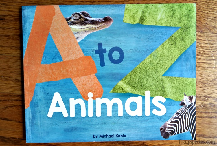 a-zoo animals book
