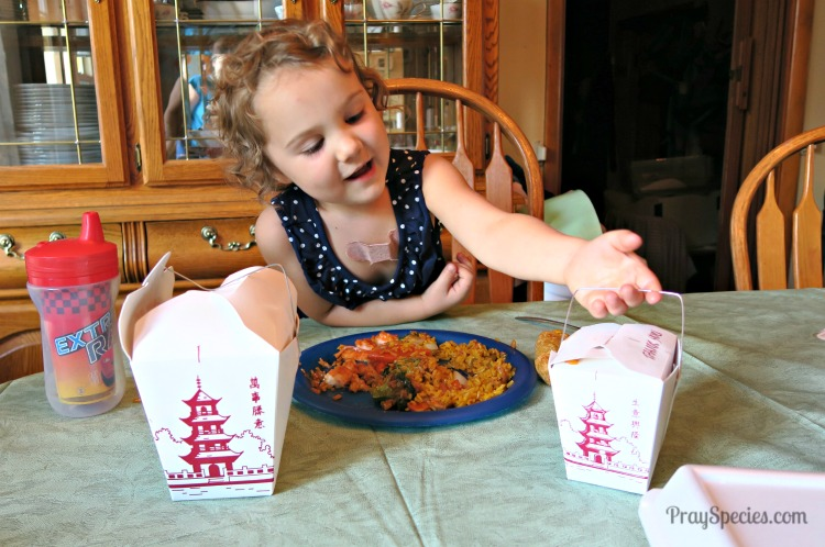 Chinese Take Out for Give Your Child the World