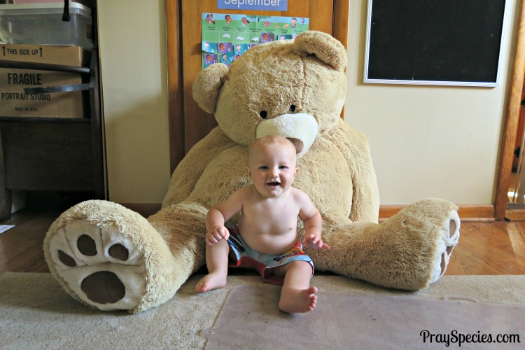 guppy-turned-10-months-old-bear-picture-in-his-swimsuit