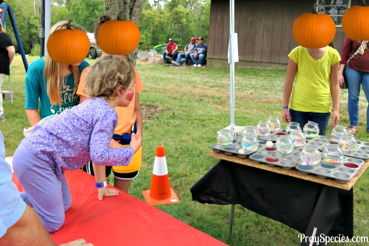 fish-bowl-game-fall-festival