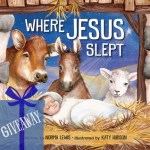 Where Jesus Slept – Picture Book Giveaway