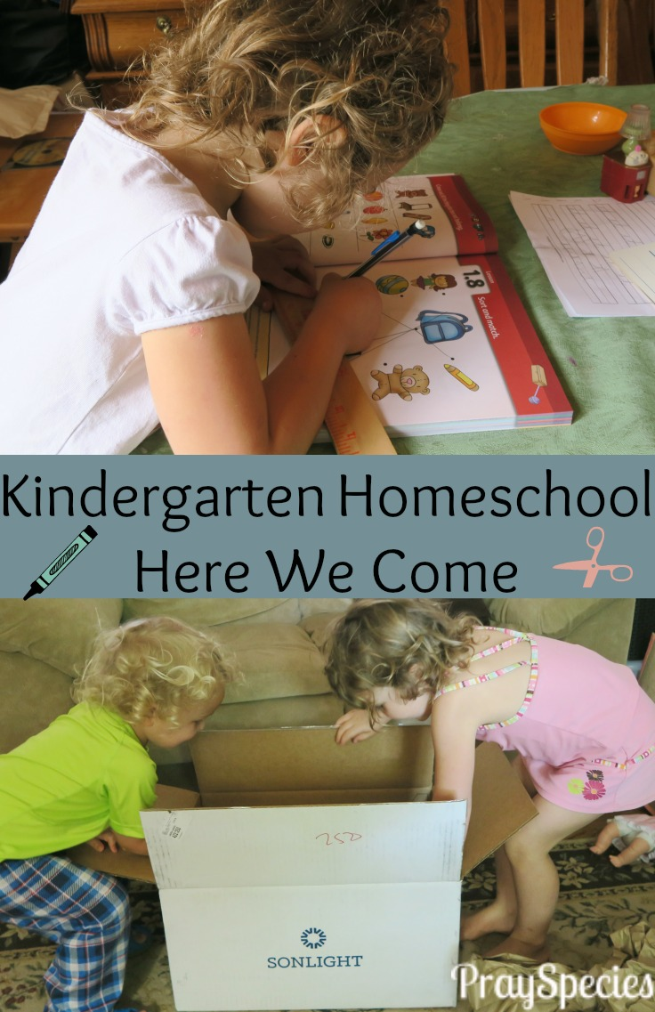 Deciding to homeschool kindergarten with Sonlight was a great choice!
