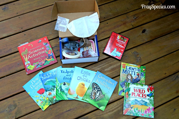 Sonlight science is a wonderful combination of story books, heavily illustrated concept books, and experiments. The experiments can be completed easily with the included supplies and items commonly found around our house. The DVD brings relief when there just isn't time or interest in completing every experiment. The pre-recorded experiments are basic without overly flashy graphics or music. I love this about them, it keeps us focused on the science!