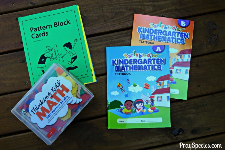 For our family, Singapore math seems to be the right mix of straight forward and fast paced problem solving.