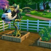 Садоводство в Sims 4 — тонкости и секреты