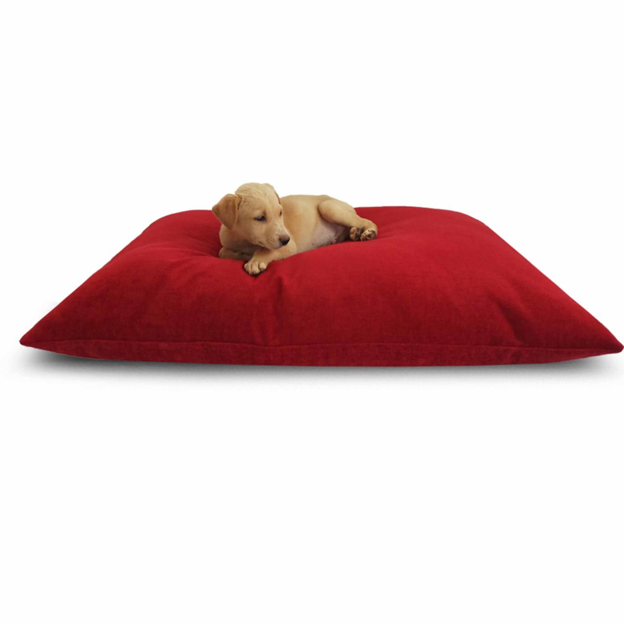 faux leather sofa india pillow back slipcovers dog bed | 30% discount buy now! @prazuchi