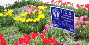 A picture of one of the gardens created in a YES program.