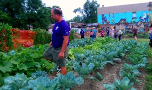 Flint residents work in a community garden, part of the Clean and Green Program developed by the Genesee County Land Bank Authority in the City of Flint. Image courtesy: Genesee County Land Bank Authority
