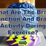 brain function exercise