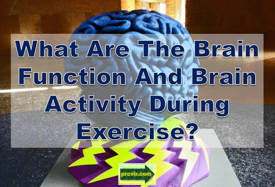 brain function exercise