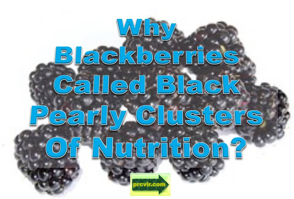 blackberries_nutrition