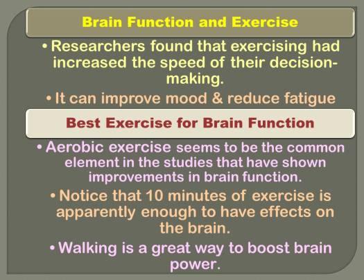 brain activity_3