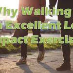 walking_low impact exercise