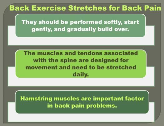 Back Exercise 2