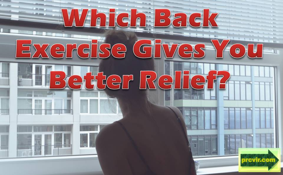 back exercise_cover