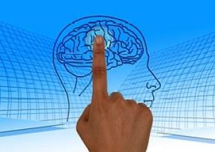 brain-wellness