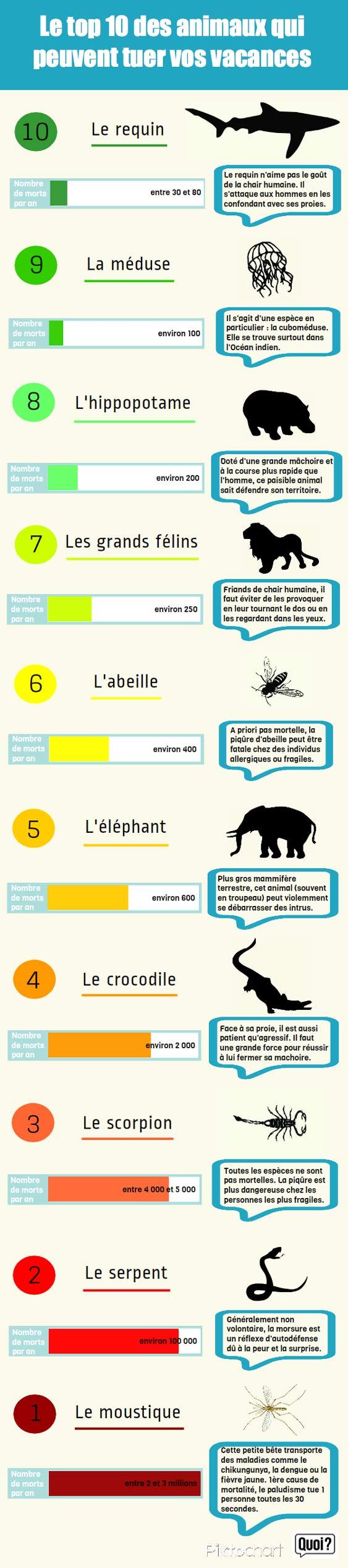 Animal Le Plus Dangereux Pour L'homme : animal, dangereux, l'homme, Animal, Chances, M'intéresse