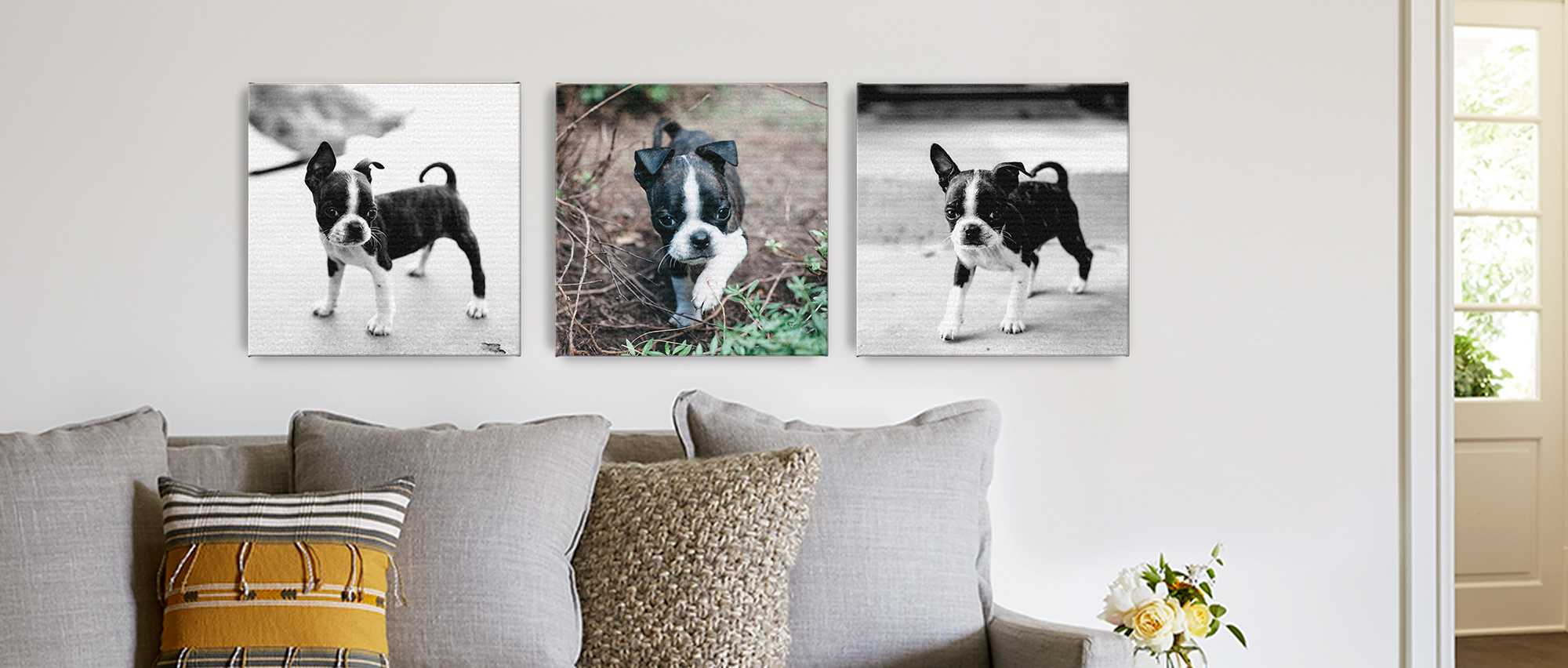 Custom Pet Photo Gifts Photo Gifts For Pets Snapfish