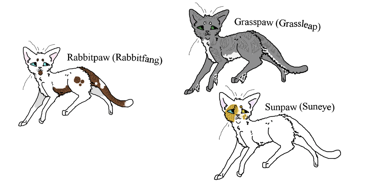 Warriors Cats For TBB(WTA/Open) by anime4always on DeviantArt