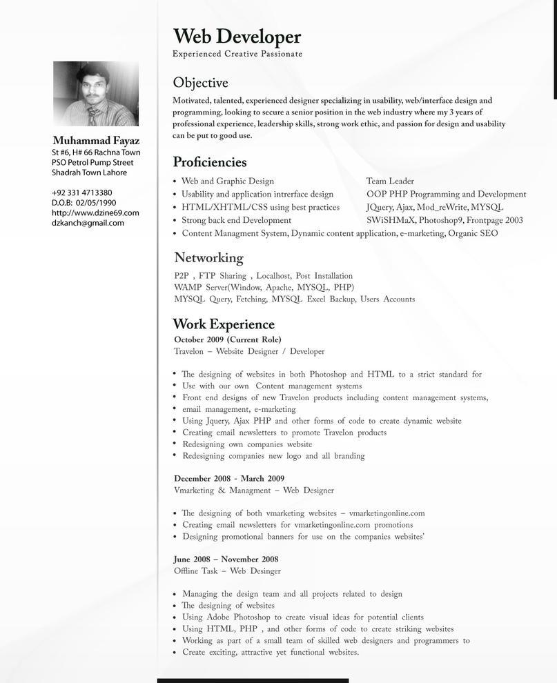 Cv Professional By Dzkanch On Deviantart