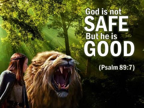 Image result for god is not safe