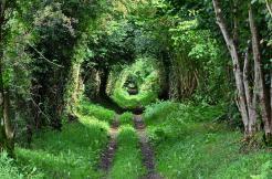 Chemin de Randonn-C.SALMON