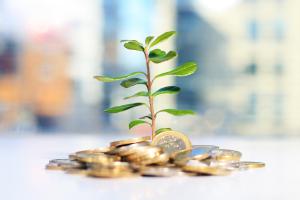 Evergreen Asset(金のなる木)。