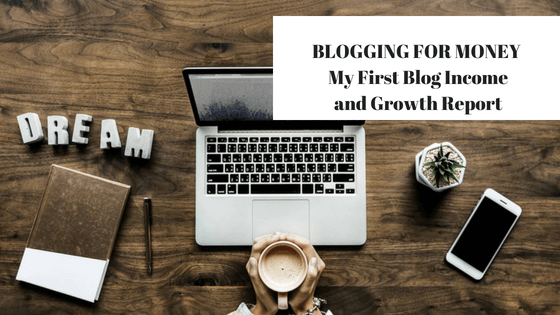 Blogging for Money : My First Blog Income and Growth Report
