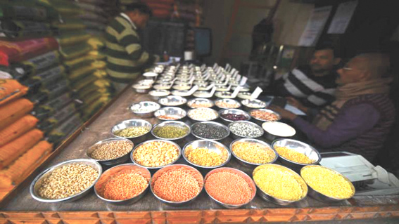 Centre buys 52.83 lakh tonnes of pulses, oilseeds under PSS so far