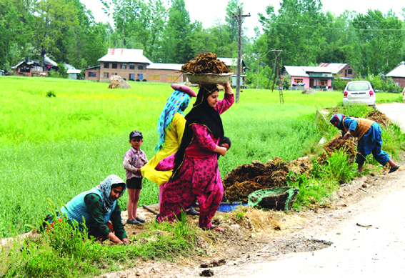 Womenfolk carrying cow dung baskets on their heads degrading: SHRC