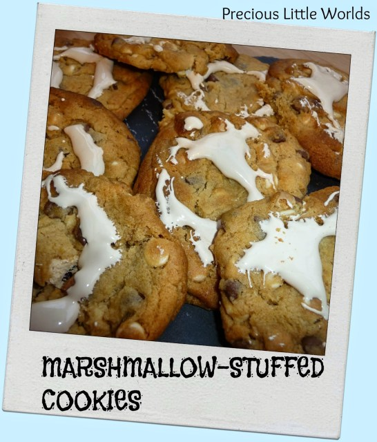 marshmallow stuffed cookies