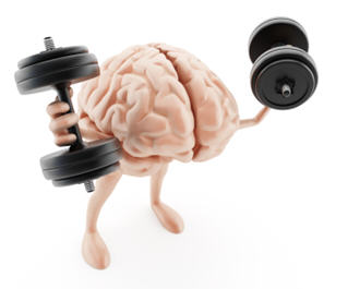 training-the-brain