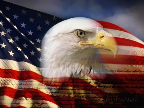 ジョセフ-ゾーム-ハクトウワシの頭部と米国国旗