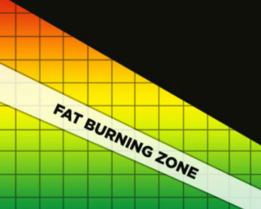 What You Need to Know About the Fat Burning Zone