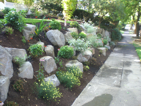 boulders & rock in garden