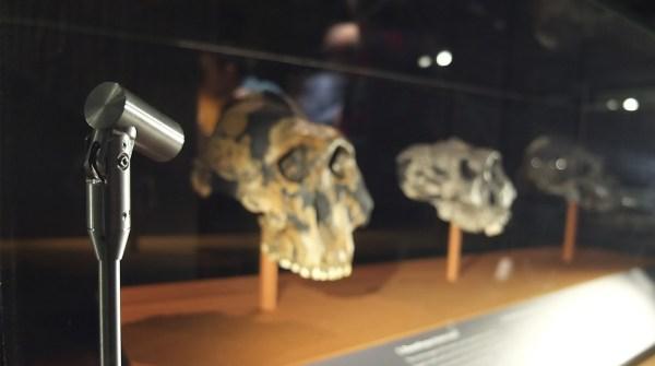 Precision Led Luminaires Light Of Human Evolution